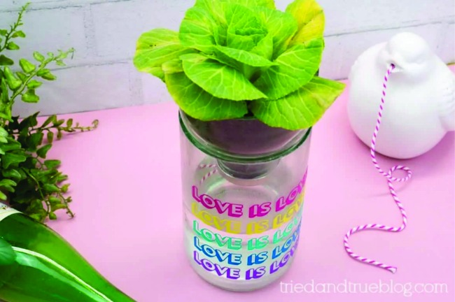 Recycled crafts CAN be totally useful like this adorable self watering mini-planter!