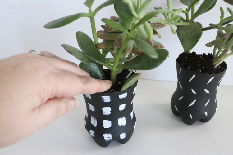 Recycled crafts from old soda bottles make cute planters for small plants or seedlings - come see how to make these in mere minutes!